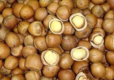 2 Pound 908 grams Max 89% OFF Stir-fried hazelnut from A Grade Northeast C Soldering