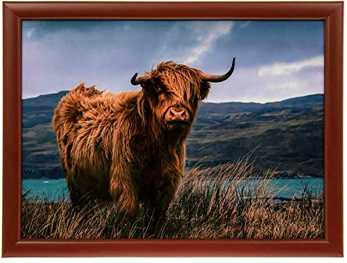Highland Cow Design Lap Tray - Padded Bean Bag Cushion TV Dinner LAPTRAY