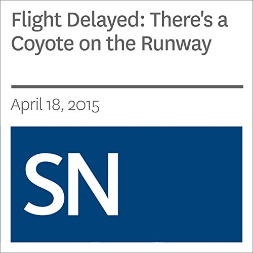 Flight Delayed: There's a Coyote on the Runway audiobook cover art