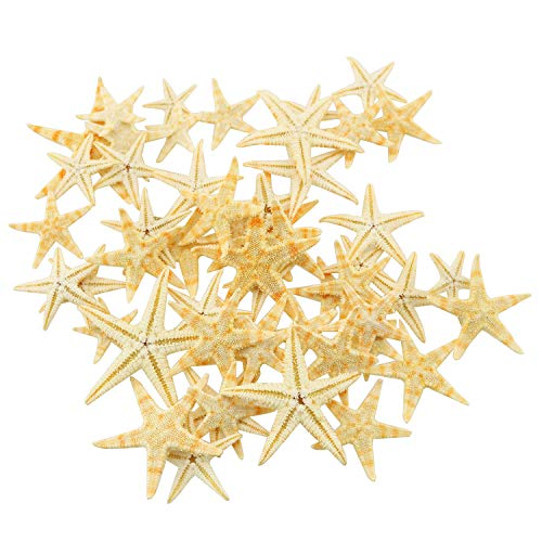 Tegg 100PCS 2Sizes Yellow Small Starfish for Beach Crafts Decor Home Decor and Craft Project