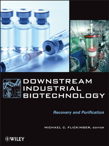 Downstream Industrial Biotechnology: Recovery and Purification (English Edition)