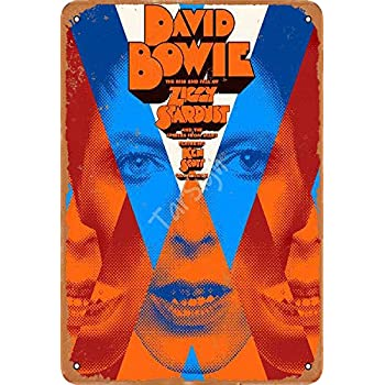 Amazon Com Tarsign David Bowie Ziggy Stardust Hammersmith Odeon Vintage Tin Sign Logo 12 8 Inches Advertising Eye Catching Wall Decoration Home Kitchen