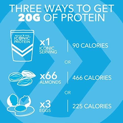 Iconic Protein Powder, Chocolate Truffle, 1 Lb (17 Serving) | Sugar Free, Low Carb Protein Shake | 20g Grass Fed Whey Protein & Casein | Lactose Free, Gluten Free, Kosher, Non-GMO | Keto Friendly 2