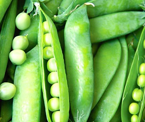 1. Lincoln Peas