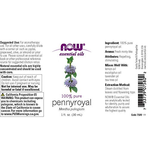 NOW Essential Oils, Pennyroyal Oil, Purifying Aromatherapy Scent, Steam Distilled, 100% Pure, Vegan, Child Resistant Cap, 1-Ounce