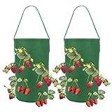 louisayork - confezione da 2 vasi in tessuto per fragole, da appendere, per coltivare pomodori, erbe, fiori, fragole, feltro, verde, 38*22