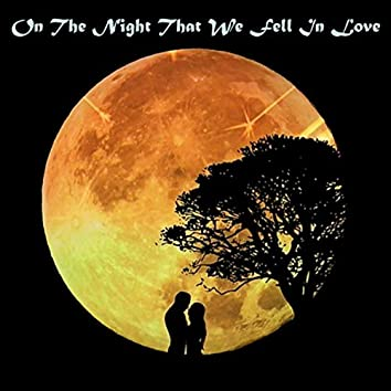 On the Night That We Fell in Love