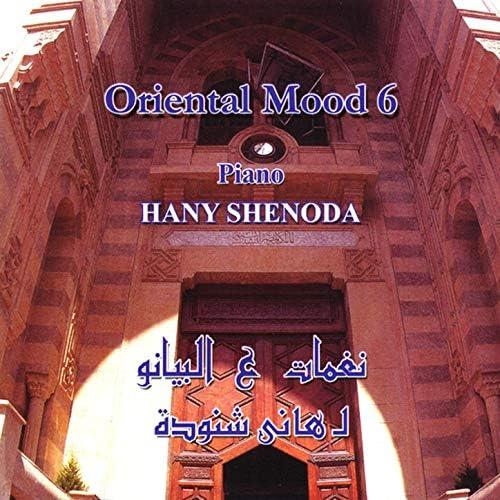 Hany Shenoda