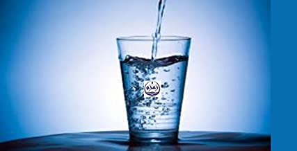 Zamzam Water (ماء زمزم) - Small Bottle 12 oz - Allah (SWT) is The Healer NOT The Water