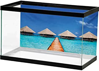 bybyhome Aquarium Background Sticker Landscape,Infinity Pool with Palms Reflections and Crystal Water Tropic Resort Photo,Blue Green White Background Aquarium