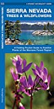 Sierra Nevada Trees & Wildflowers: A Folding Pocket Guide to Familiar Plants of the Montane Forest Region (Wildlife and Nature Identification)