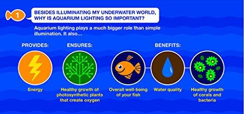 MarineLand LED Aquarium Light, Natural Shimmering Light
