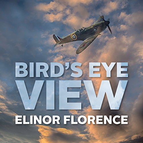 Bird's Eye View audiobook cover art