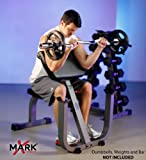 XMark Seated Preacher Curl Weight Bench XM-4436