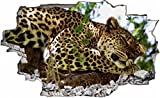 DesFoli Leopard Gepard 3D Look Wandtattoo 70 x 115 cm Wanddurchbruch Wandbild Sticker Aufkleber C073