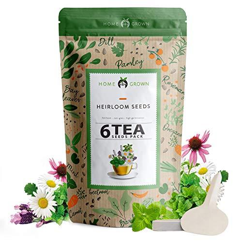 Herb Seeds Pack for Tea | 6 Heirloom Herbal and Medicinal Tea Seeds for Planting | Chamomile, Lavender, Mint, Lemon Balm, Peppermint, Purple Coneflower Echinacea | Herb Garden Starter Kit Indoor |