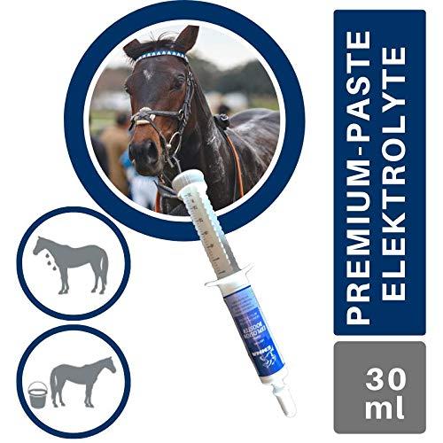 EMMA® Elektrolyte I Booster I Paste Mineralstoffe Natrium (Salze) Kalium Magnesium I Vitamin B-Komplex B1 B2 B6 B12 I Durchfall Schwitzen I Mineralien Hydration Regeneration Pferd 1St