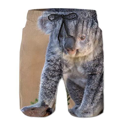 Love girl Schnelltrocknende Strandshorts für Herren Niedliche Koala-Mesh-Futter Surfing Swim Board Trunks mit Taschen, Größe XL