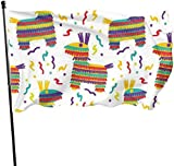 Viplili Flagge/Fahne, De Mayo Fiesta Flag 3x5 FT Garden Flag Tough The Strongest, Longest Lasting Flag National Flag Outdoor Flags