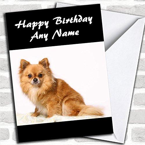 Kleine Chihuahua Hond Verjaardagskaart Met Envelop, Kan Volledig Gepersonaliseerd, Verzonden Snel & Gratis
