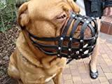 L&J <span class='highlight'>Pet</span>s <span class='highlight'>Uk</span> Light leather Dog Muzzle for Dogue de Bordeaux and Bullmastiff and Other (DB3, Black)