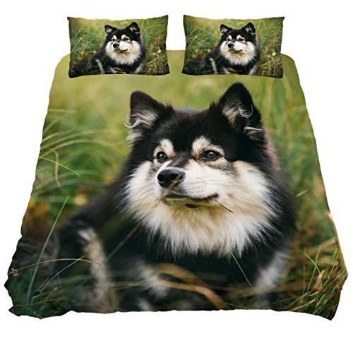 ASIGA Juego de funda de edredón de 3 piezas con estampado de hierba de perro negro con cierre de cremallera, juego de cama para mujeres y hombres, ropa de cama de dormitorio