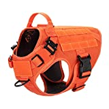 "ICEFANG Tactical Dog Harness with 2X Metal Buckle,Working Dog MOLLE Vest with Handle,No Pulling Front Leash Clip,Hook and Loop for Dog Patch (M (Neck:16""-22"" ; Chest:25""-31""), Safety Orange)"