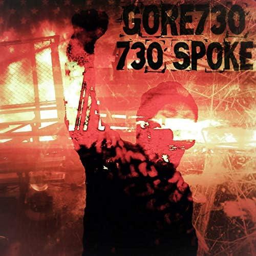 Gore730