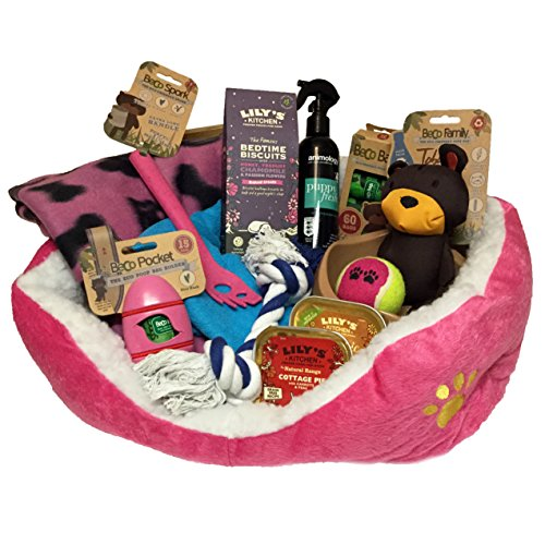Puppy Hamper Pink - Ideal gift for small dogs birthday or Christmas