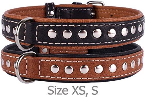CollarDirect Handgefertigt Hundehalsband, Nieten, Echtes Leder Halsband für Kleine Hunde, Weich Gepolsterte Leder Welpen Halsband Braun Schwarz Medium, Neck Fit 13