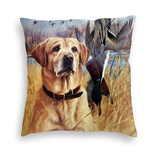 Wi Walking Pi Labrador Retriever Duck Yellow Dogs Outdoors Home Premium Velvet Throw Pillow Cases Decorative Throw Pillow Covers Decorative Pillowcase Cushion Covers 18x18 20x20 24x24 26x26 Inches