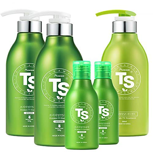 Premium TS Hair Loss Prevention Shampoo Gift Set 1 [ Shampoo 500ml (16.9oz) + Shampoo 500ml (16.9oz) + Treatment 500ml (16.9oz) + 2 Travel Size Shampoo100ml (3.38oz) ] Made in Korea by TS Shampoo