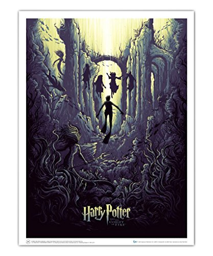 Harry Potter and the Goblet of Fire Water Challenge Poster 6