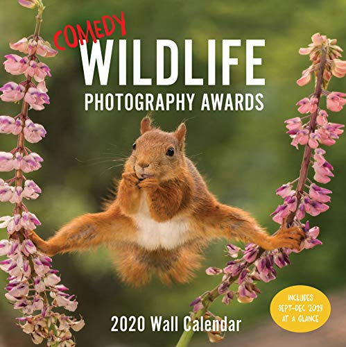 Comedy Wildlife 2020 Wall Calendar: (Funny 2020 Wall Calendar, Funny Wall Calendar with Animals, Photo Wall Calendar)