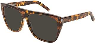 Sunglasses Saint Laurent SL 1-015 HAVANA/GREY