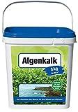 Beckmann Algenkalk 6 kg gegen den Buchsbaumzünsler auch für den Bio-Anbau