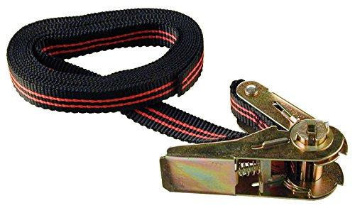 Connex B34403 Zurrgurt mit Spannratsche, 25 x 5000 mm EN12195-2, belastbar bis 120 kg in der Umreifung