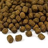 Benevo Vegan für Welpen Hundefutter, 1er Pack (1 x 2 kg) - 2