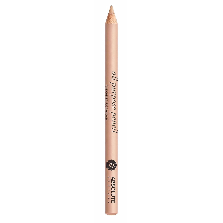 遠近法ペインギリック統計的ABSOLUTE All Purpose Pencil Concealer - Light (並行輸入品)