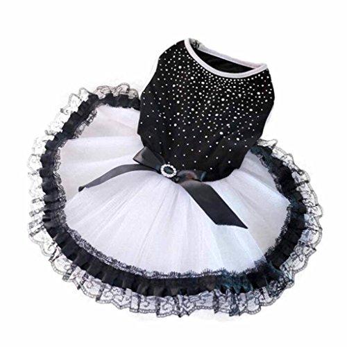 familizo moda perro de mascota Cachorro falda tutú vestido de boda de peluche Princesa Encaje Ropa Prendas De Vestir