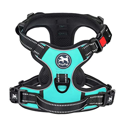 PoyPet No Pull Dog Harness, [Release on Neck] Reflective Adjustable No Choke Pet Vest with Front & Back 2 Leash Attachments(Mint Blue, M)