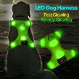 Higo LED Dog Harness, USB Rechargeable Soft Mesh Harness No Pull Lighted Safety