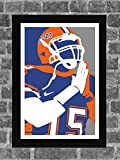 Florida Gators Tim Tebow Portrait Sports Print Art 11x17