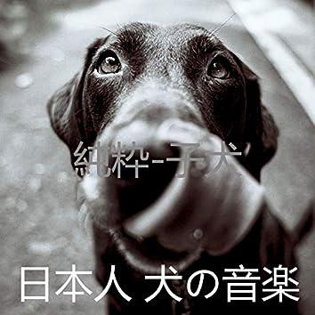 純粋-子犬