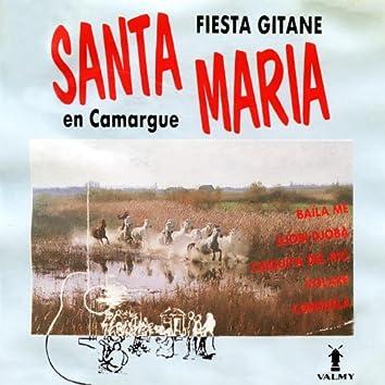 Fiesta gitane en Camargue