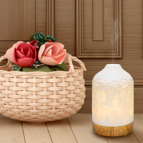 Ceramic-Ultrasonic-Aroma-Oil-Diffuser-100ml-Aromatherapy-Essential-Oil-Diffuser-Whisper-Quiet-Humidifier-with-Timer-Adjustable-Mist-Mode-7-Colors-LED-Lights-Changing-for-Home-Office-Plum-Blossom