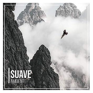 # 1 Album: Suave Ambiente