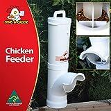 DINE A CHOOK 3.5l alimentador de pollo - ahorrar dinero en comida desperdiciada