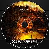 Reverse Order (Original Mix)