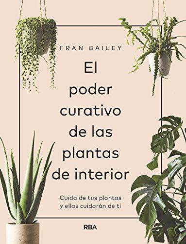 El poder curativo de las plantas de interior (PRÁCTICA)